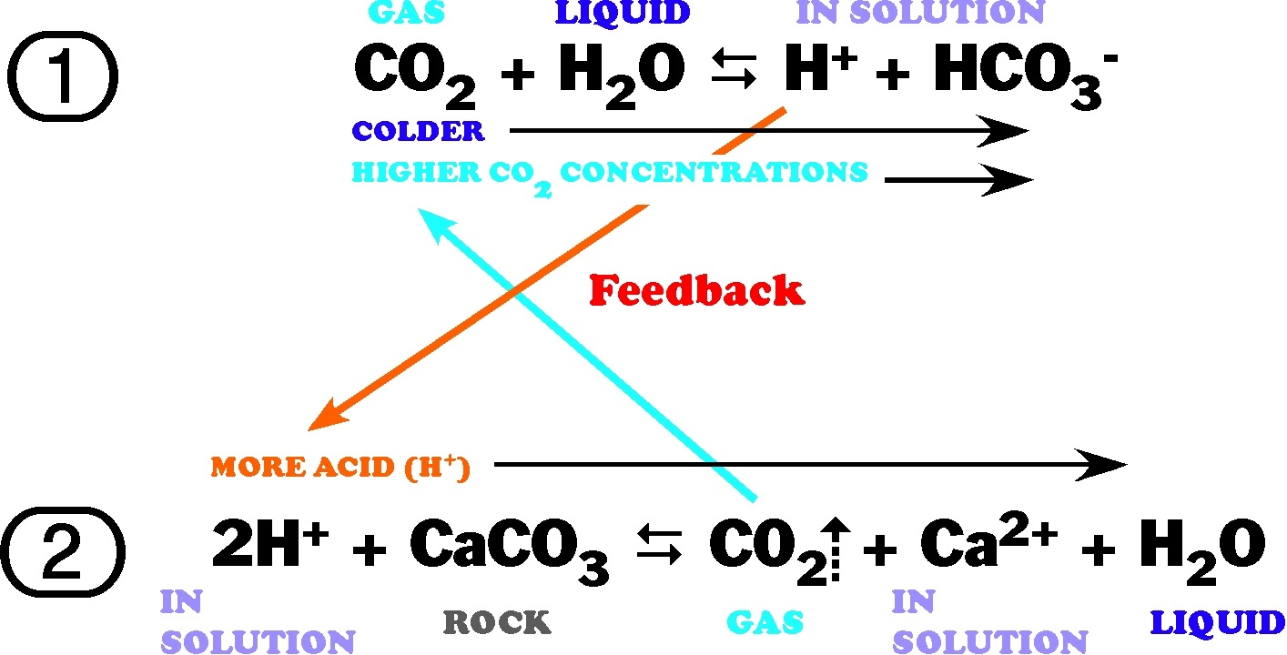 carbonate_chemistry_equations (1)